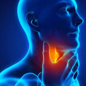 Benessere della gola e vie respiratorie
